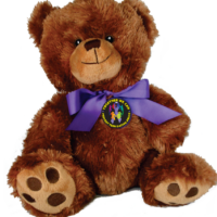 "Prevent Teen Dating Abuse! - 10"" Teddy Bear w/embroidered features"