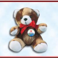 National Black HIV/AIDS Awareness Day - Teddy Bear