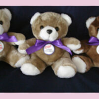 Stop Family Violence - Teddy Bear