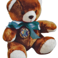"STOP SEXUAL ASSAULT- 9"" Plush Teddy Bear"