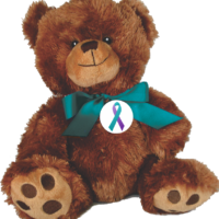 "10"" Plush Embroidered Teddy Bear with button of your choice."