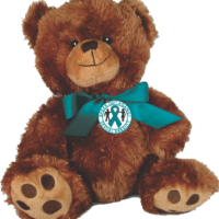 "SPEAK OUT AGAINST SEXUAL ASSAULT- 10"" Plush Teddy Bear"